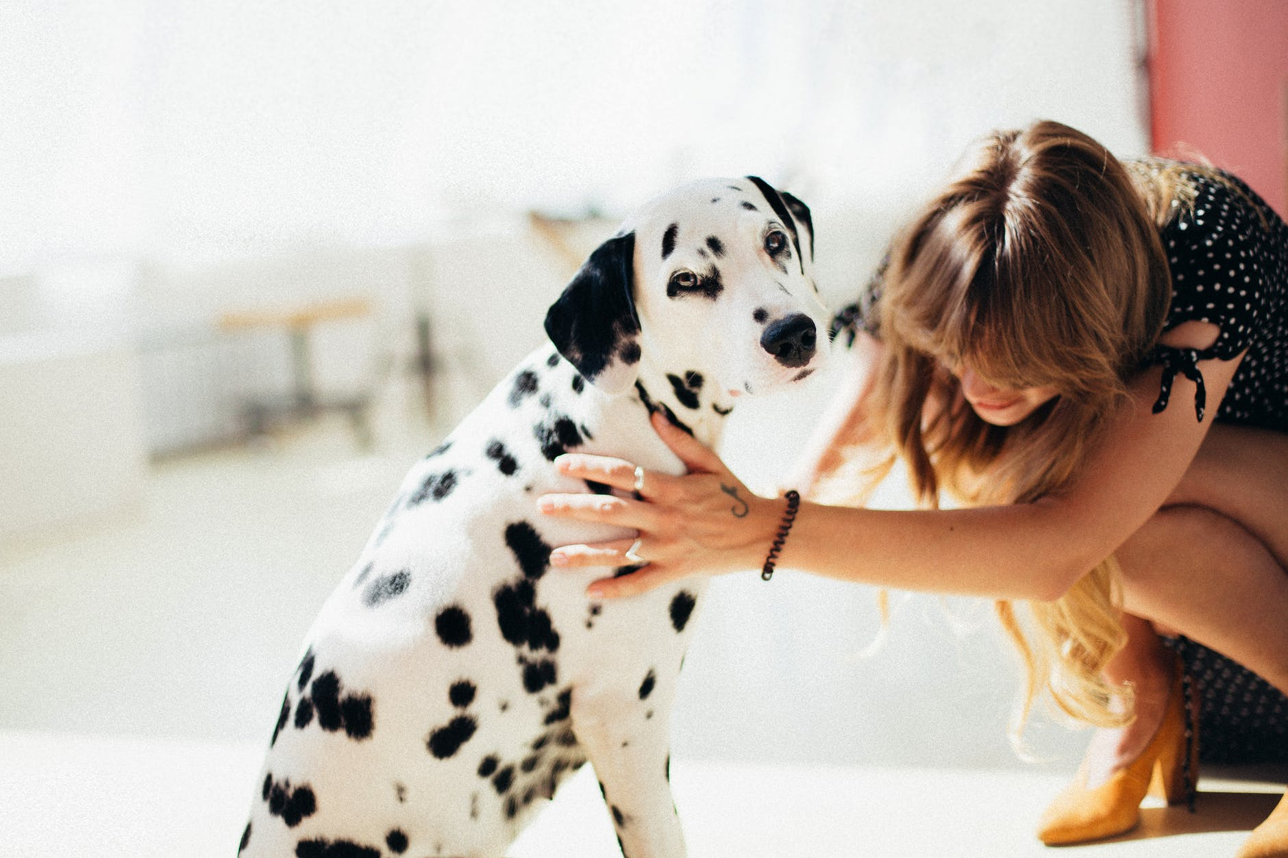 Benefits: There is evidence suggesting that attachment to pets is good for human health and even helps build community.