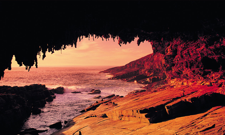 Murray River And Kangaroo Island Tours