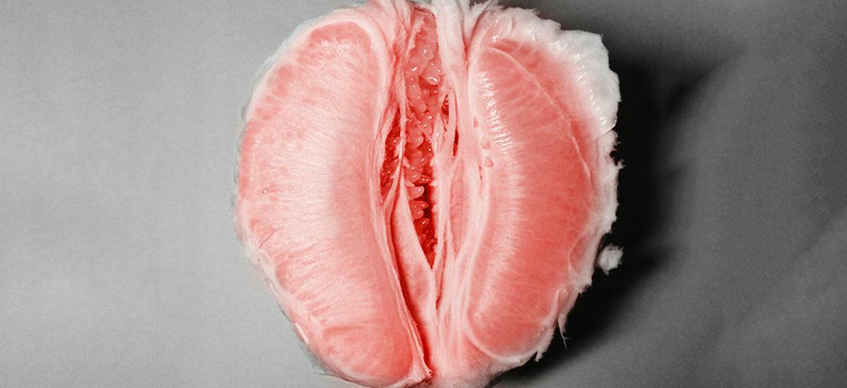 влагалище клитор и половые губы