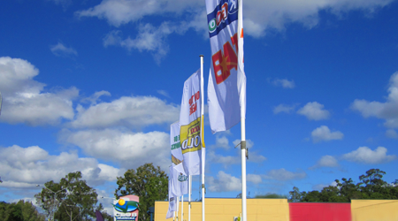 Flags promoting a living community