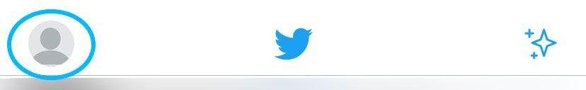 Twitter iOS Top Navigation Bar