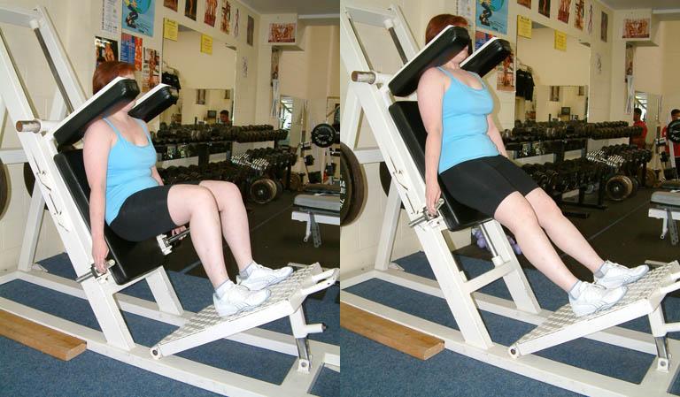 Weight Training Anatomical Adaptation Phase