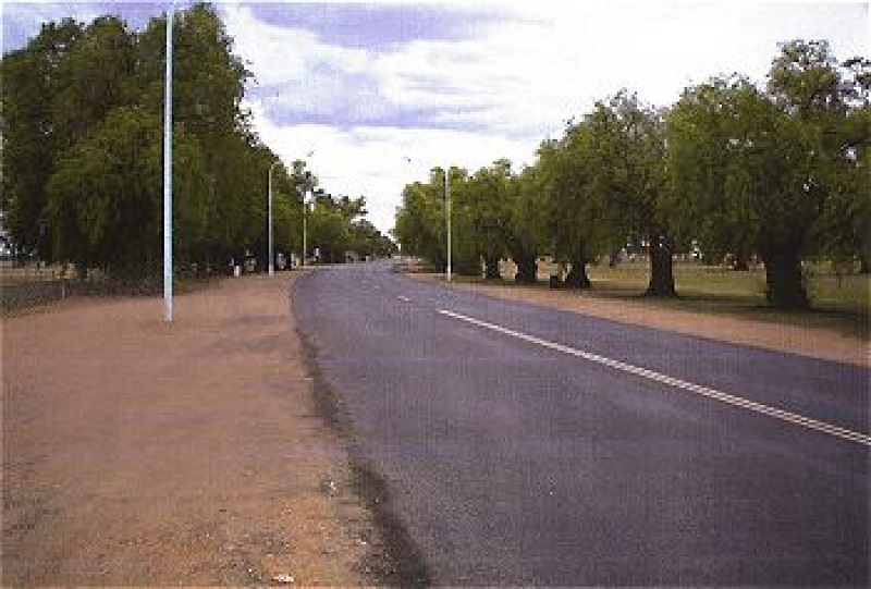 Avenue of Honour - Diggers Avenue, Condobolin