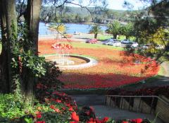 Gosford Memorial Park