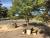 Illabo Memorial Gardens