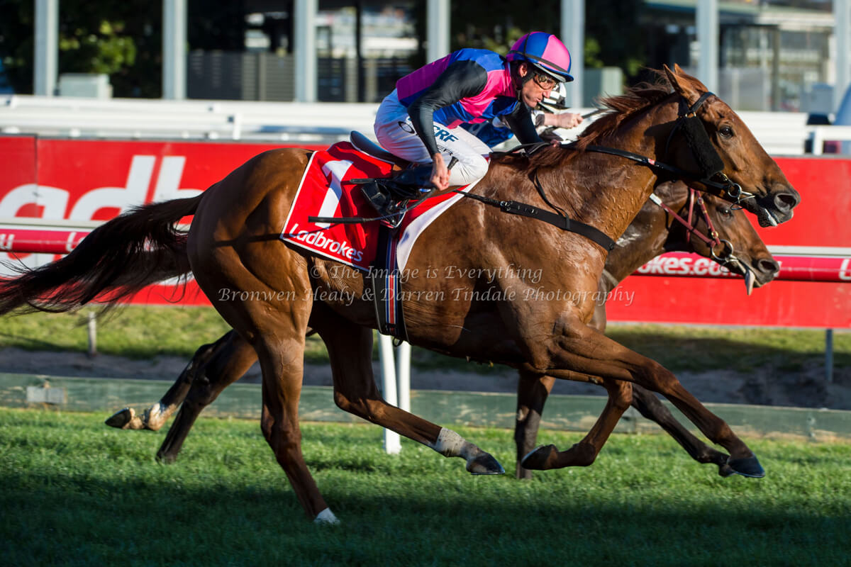 Regal Roller Stakes - Caulfield Racecourse