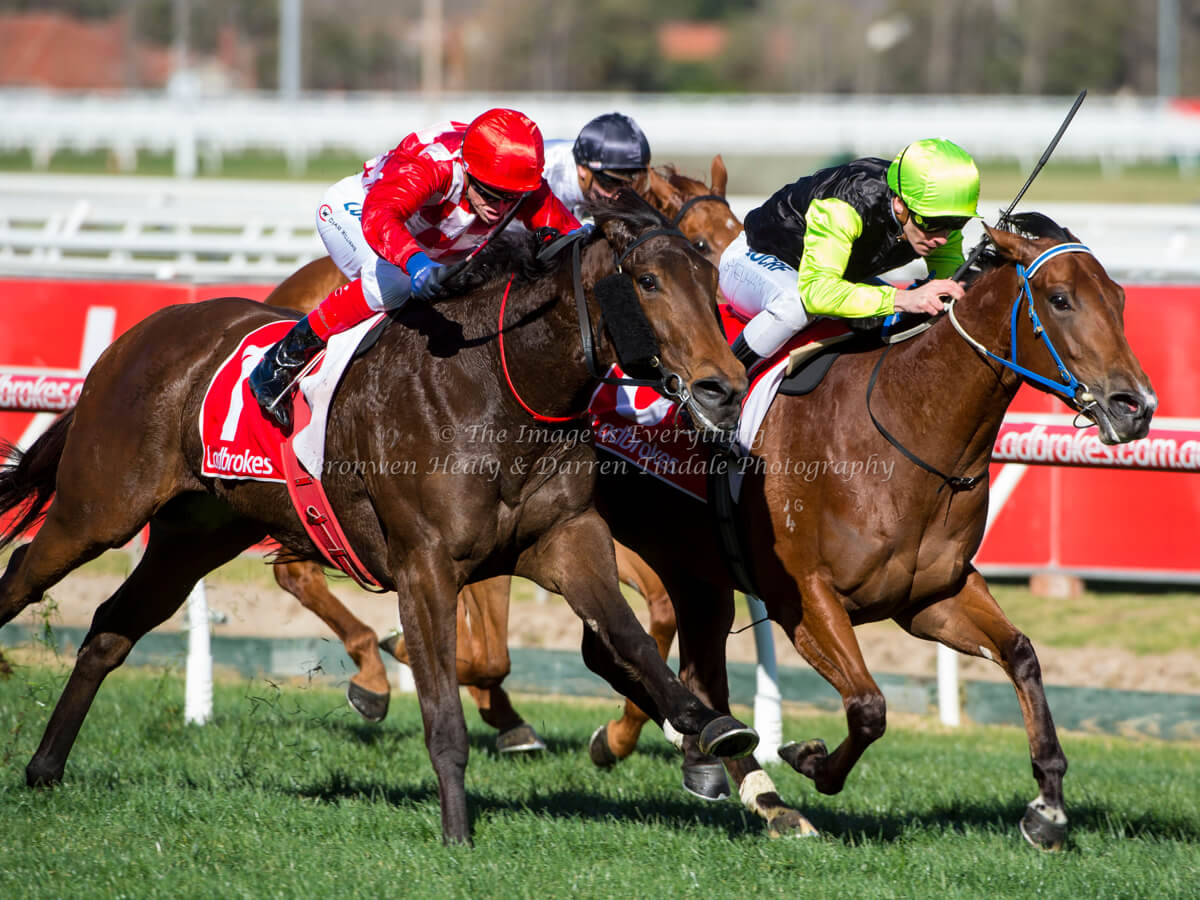 Beveridge Williams Plate (1100m) Caulfield Racecourse
