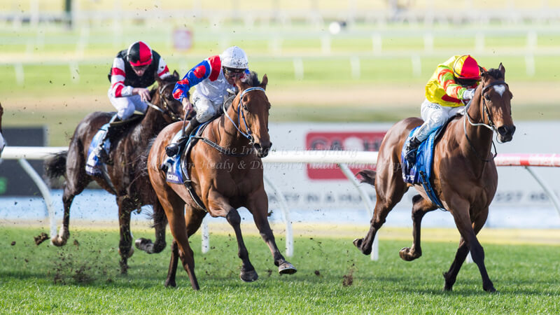 ABILITY - Bletchingly Stakes (G3) 1200m