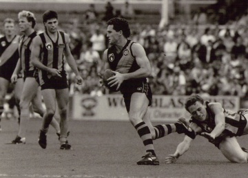 Like a Tiger of old, Anthony Banik takes on the Hawks.