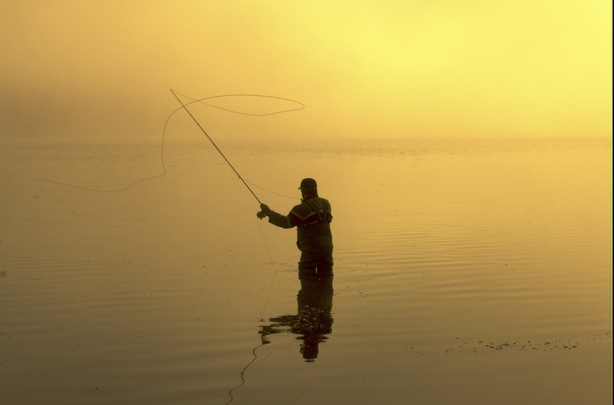 Fly fishing at dawn, in fog, is a surreal experience.