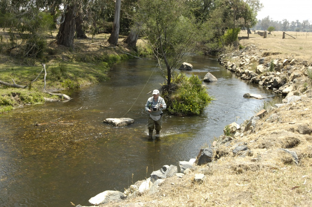 Small streams like the Rubicon River near Eildon are great venues for fly fishing.