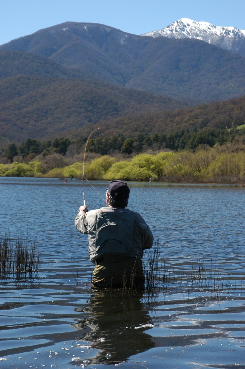 Geoff Lacey working the fly on the pondage at Mt Beauty.
