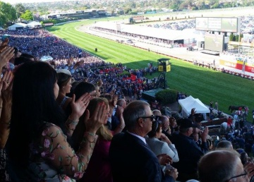 The packed stands rise to cheer their champion.