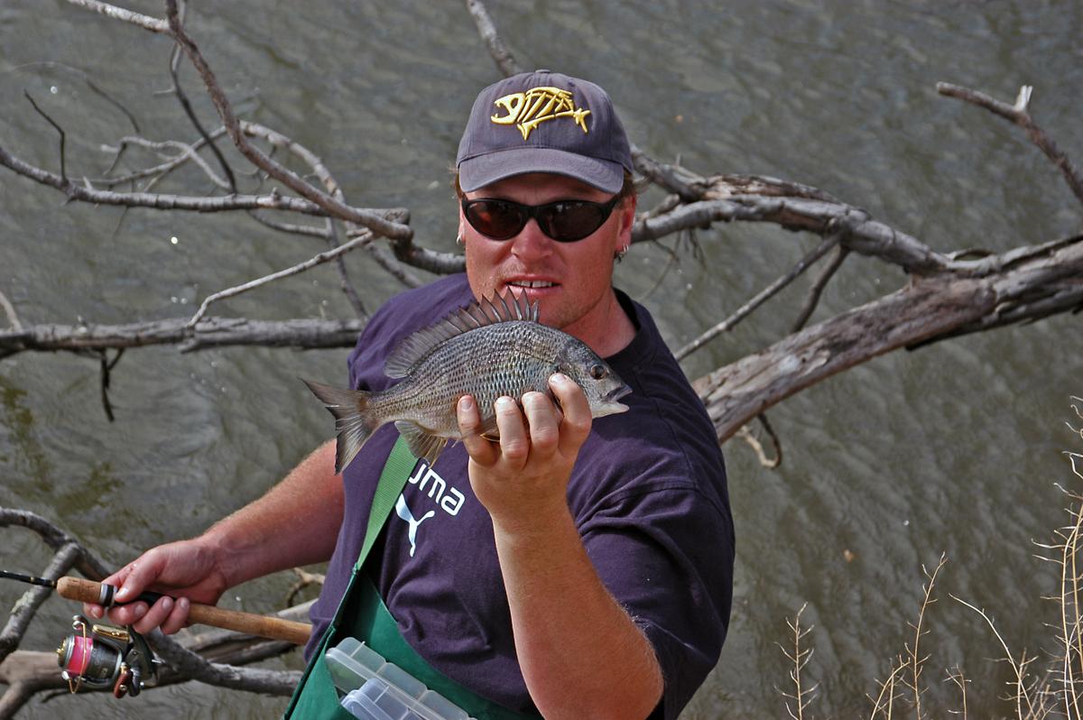 Maribyrnong river bream fishing with Cam Whittam