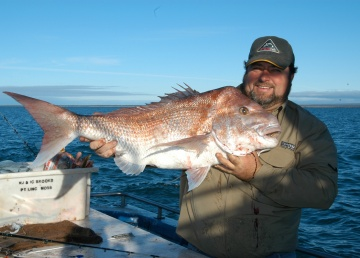Gus Storer with a 13kg snapper caught off Whyalla using yellowtail kingfish throats as bait. Among other food found inside snapper was a wallaby skull.