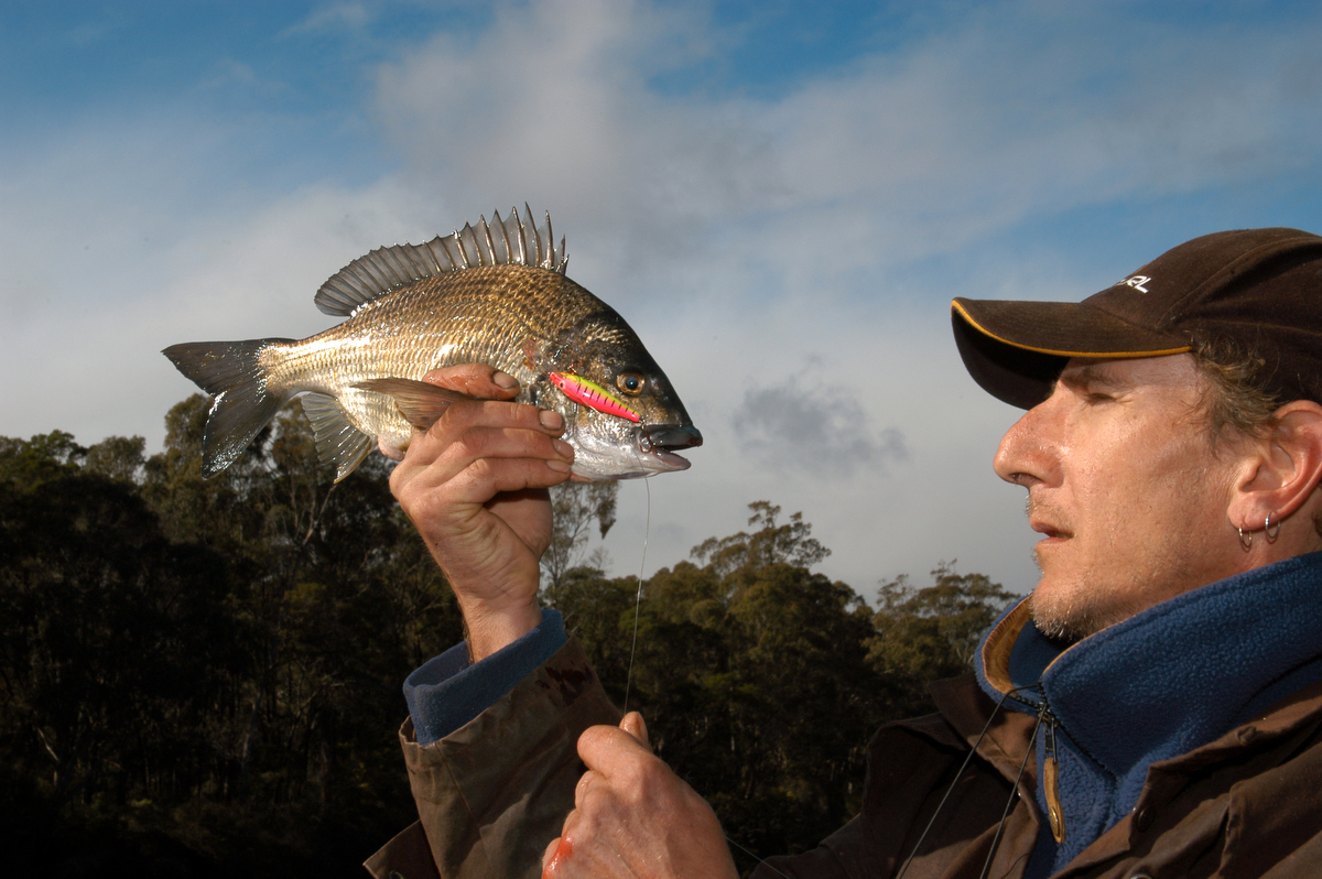 Bream is an estuary favourite and can be caught in most Victorian estuaries including the Yarra and Maribyrnong Rivers within cooee of Melbourne CBD.