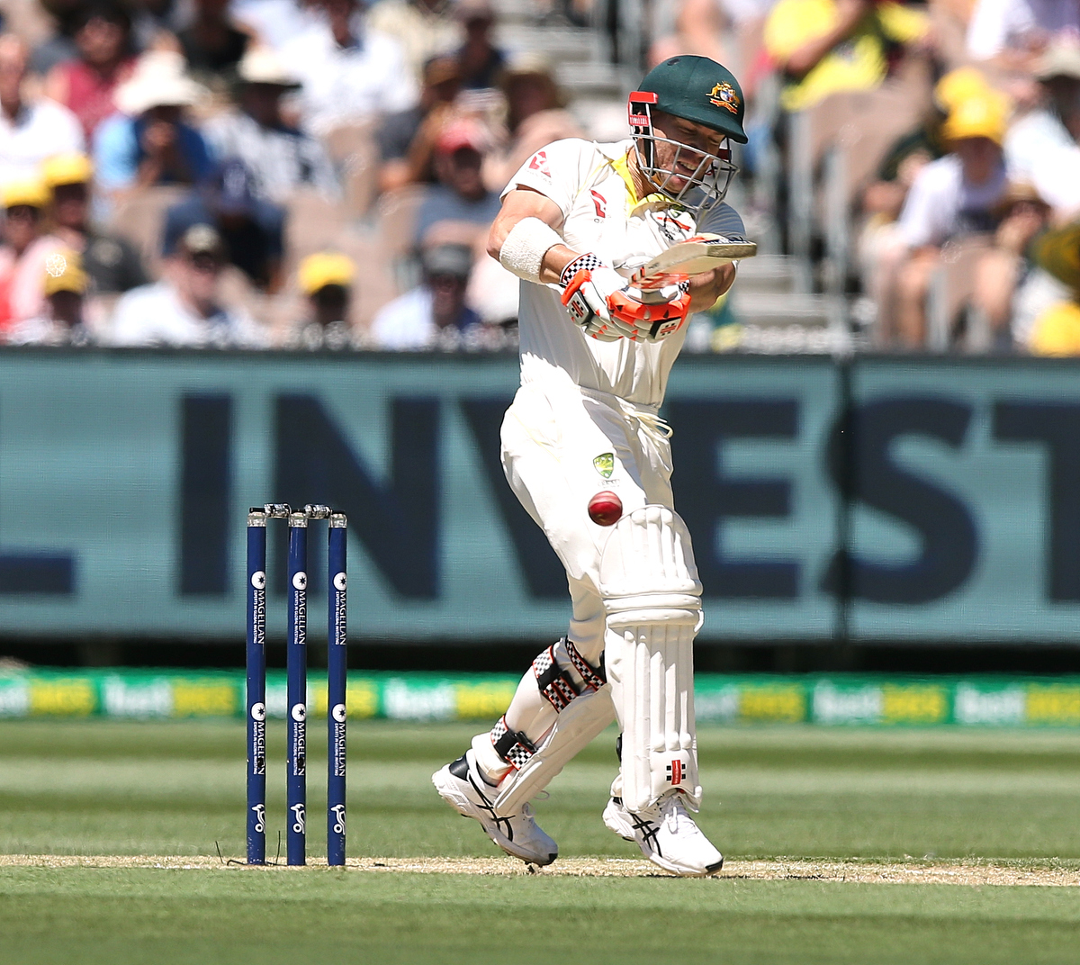 David Warner pulls Chris Woakes to bring up his fifty runs at the MCG