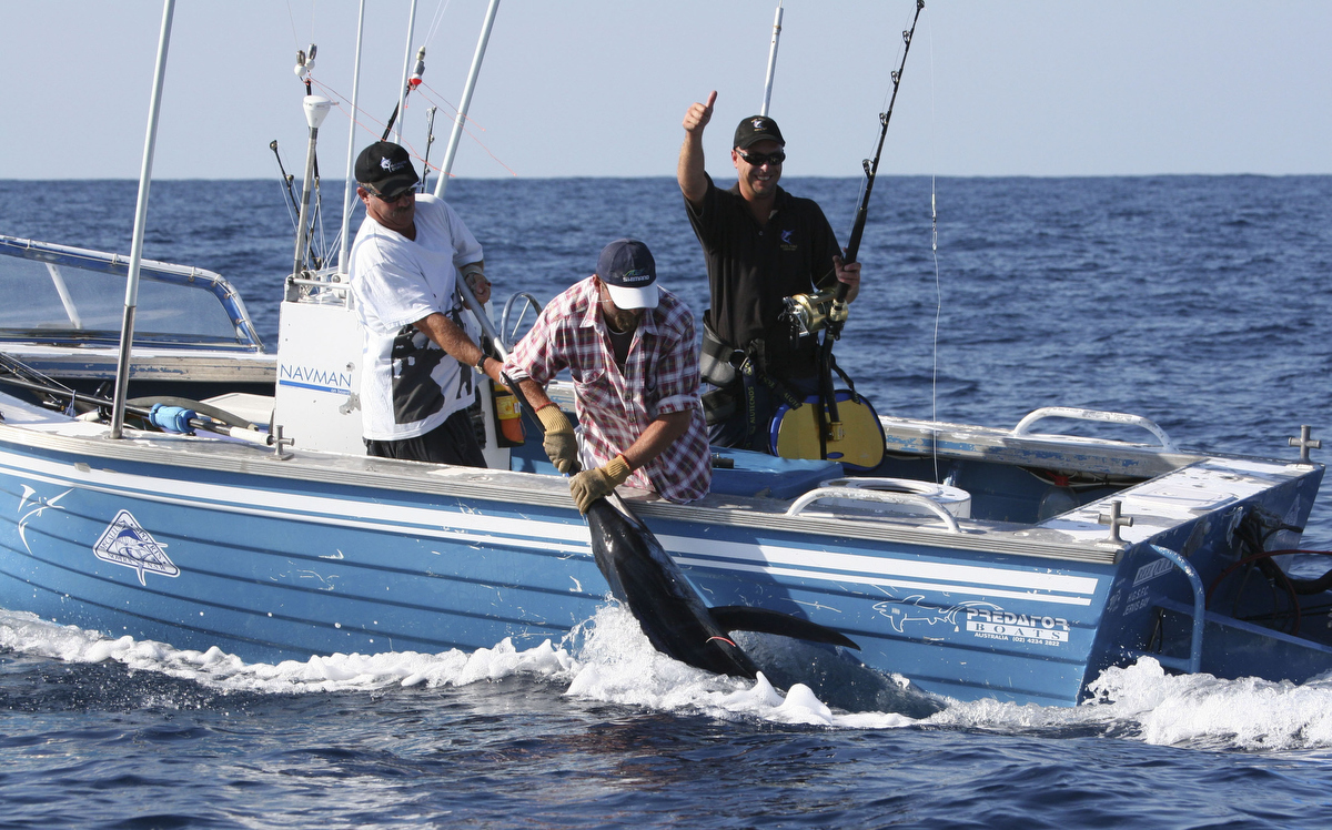 Many South Coast anglers fish for gamefish like marlin from boats in the 5-7 metre range.