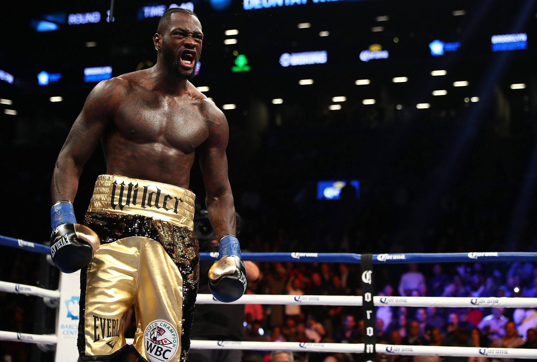 Deontay Wilder celebrates after knocking down Bermane Stiverne. Pic: Al Bello/Getty Images