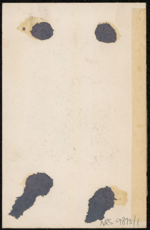 Photograph of Kendall Hammand doctor [reverse]