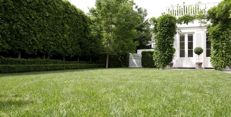 lawns.jpg#asset:1957