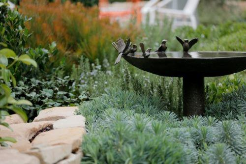 willie-bird-bath.jpg#asset:2114