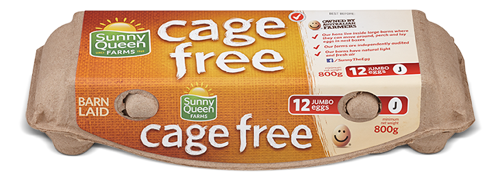 Free range eggs pack shot