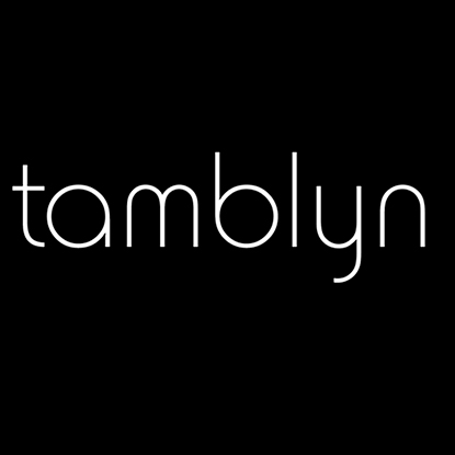Tamblyn Model Discovery 2017
