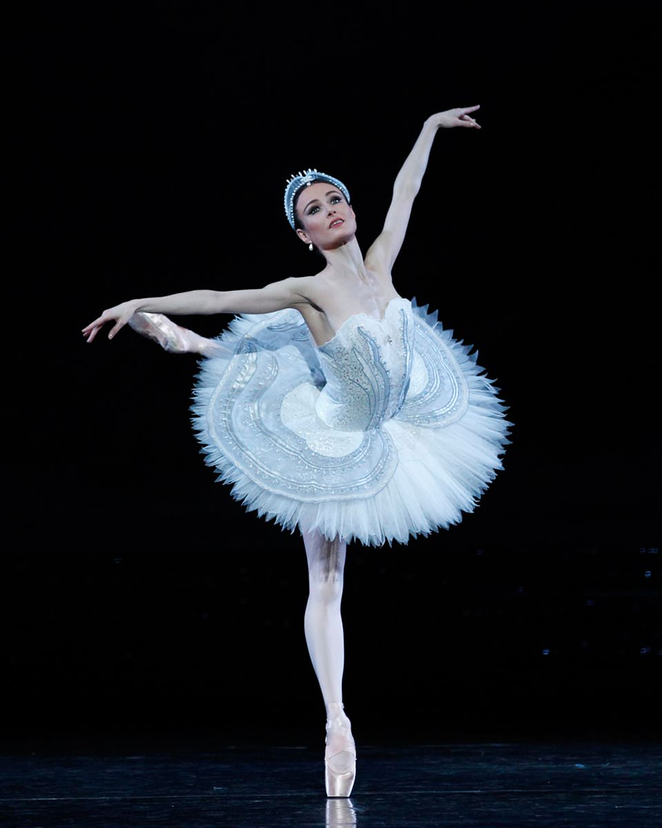 Image result for swan lake