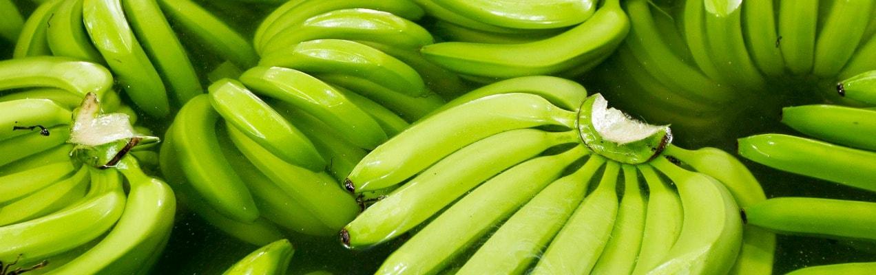 Organic Banana Puree