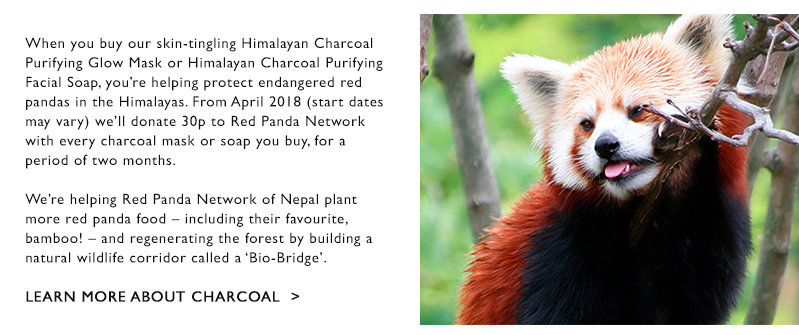 Learn more about charcoal
