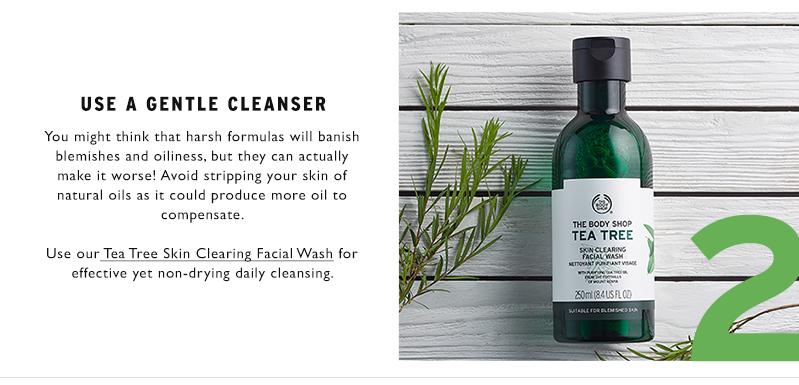 TEA TREE SKIN CLEARING FACIAL WASH 250ML