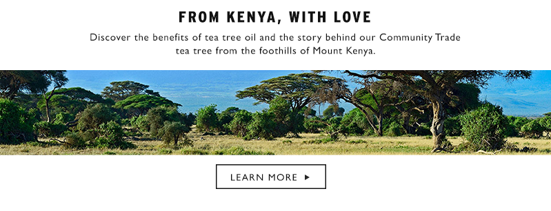 Learn more about Community Trade Tea Tree