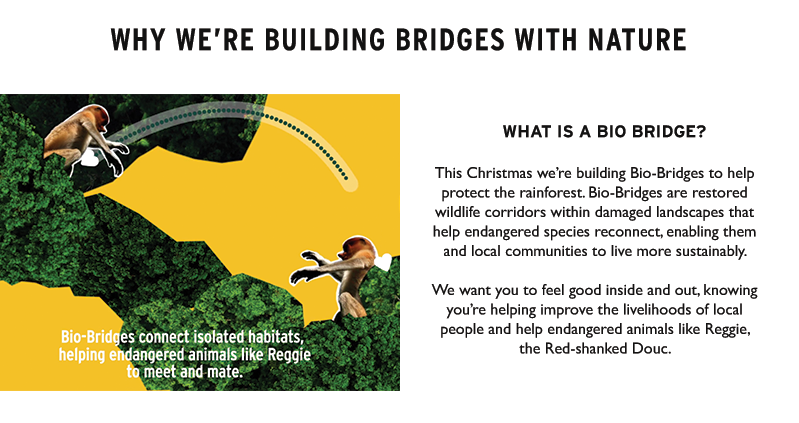 Building bridges with nature