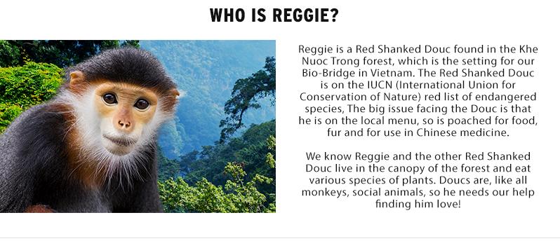 Who is Reggie?