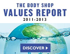 Values Report 2011-2013