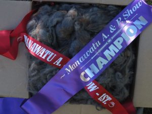 Frosted Elegance won Champion Grey Fleece at Manawatu 2015