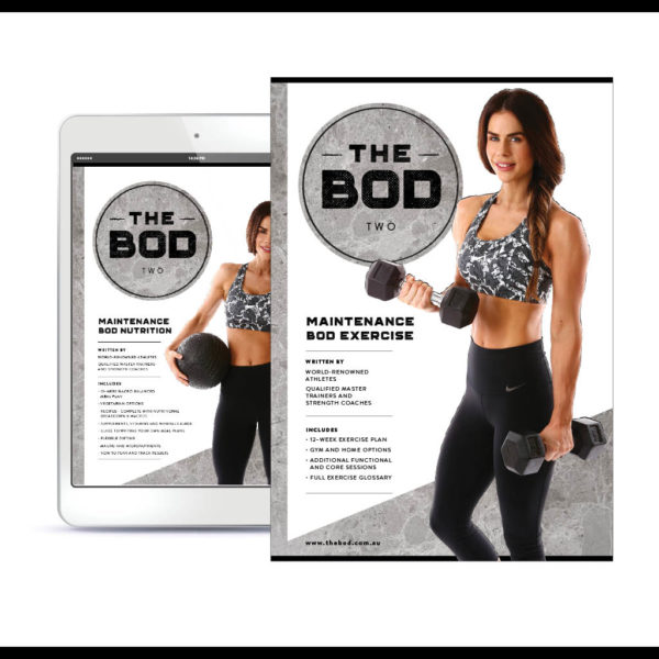 The Bod Two – Maintenance