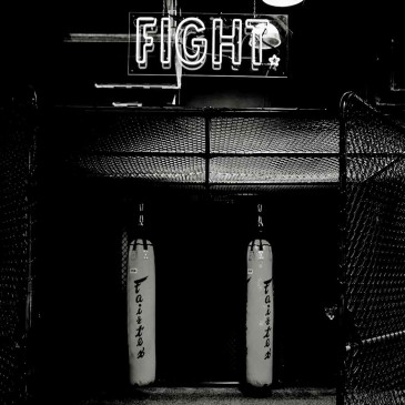 FIGHT CAGE