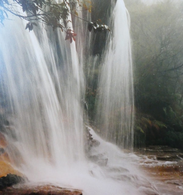 Weeping rock  wentworth falls bmtnsnsw %28hl%29 p1150991
