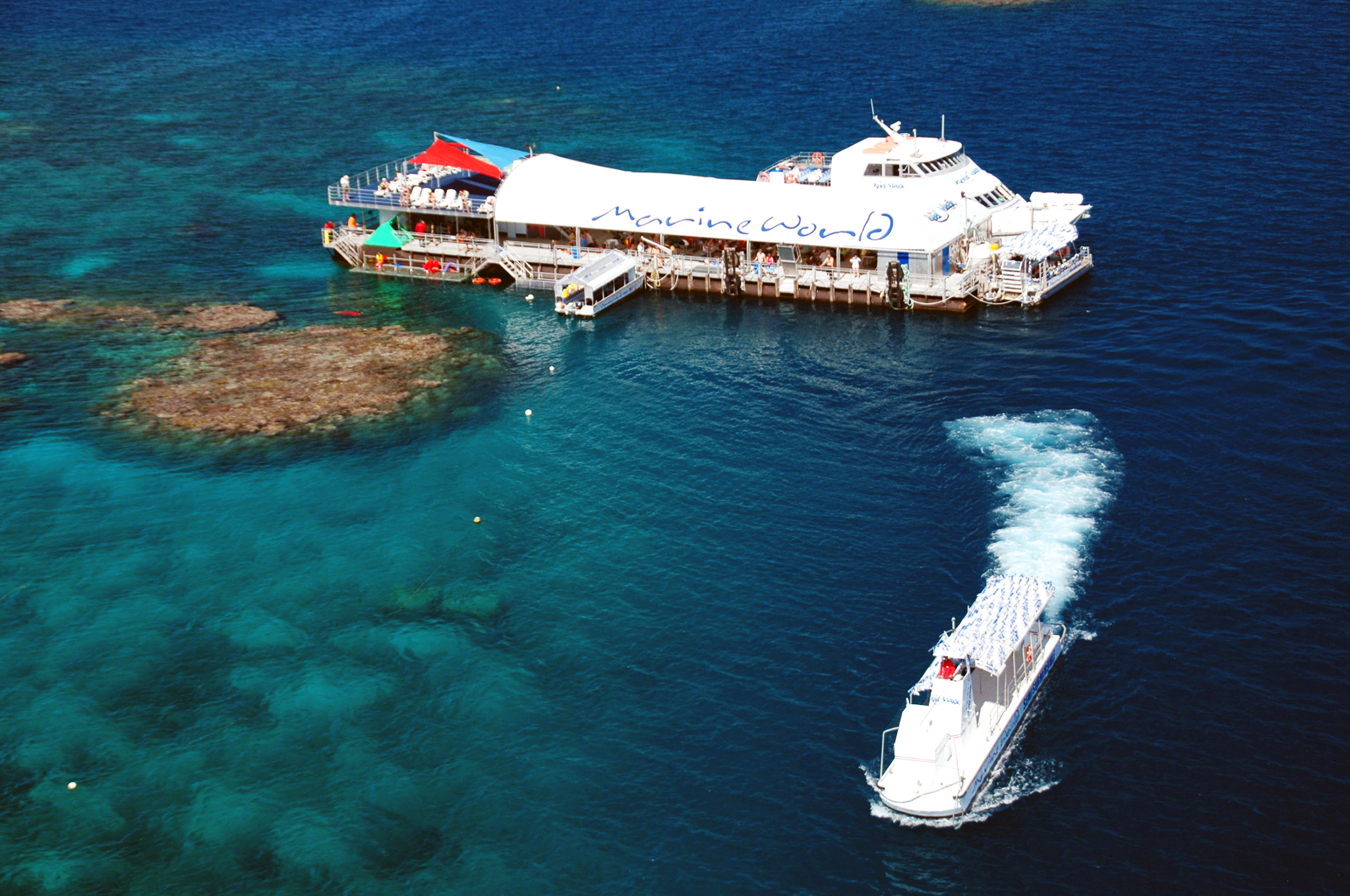 Reef Magic Cruises Review at Great Barrier Reef