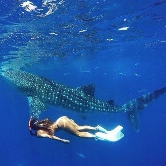 What's the best ocean adventure you've had? We think nothing comes close to swimming with whale sharks, these gentle giants in Oslob Cebu!  In case you haven't heard, we're giving away an amazing 3-nights to the beautiful island of Cebu via our promo for Father's Day. Extended until tomorrow 1pm AEST, 4 September 2015 open to all and residents. Pls check the link in our bio for how to join and WIN!  Photo by @ninjarod