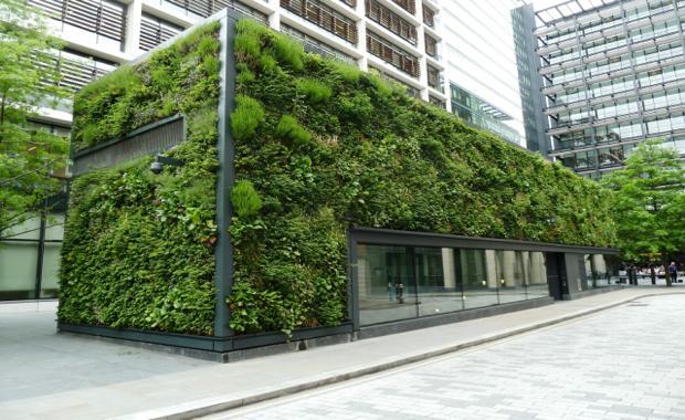 160314-green-wall-2_620x380