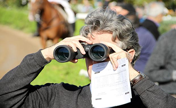 Knowledge-About-Horse-Racing_620x380