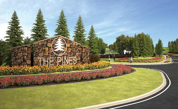 thepines1