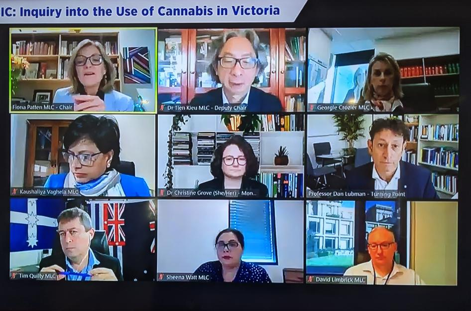 Cannabis Inquiry Meeting Zoom