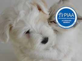 West coast pet care home page banner piaa