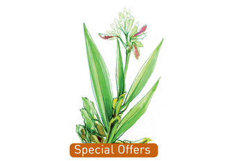 Special offers organic florameaustralia