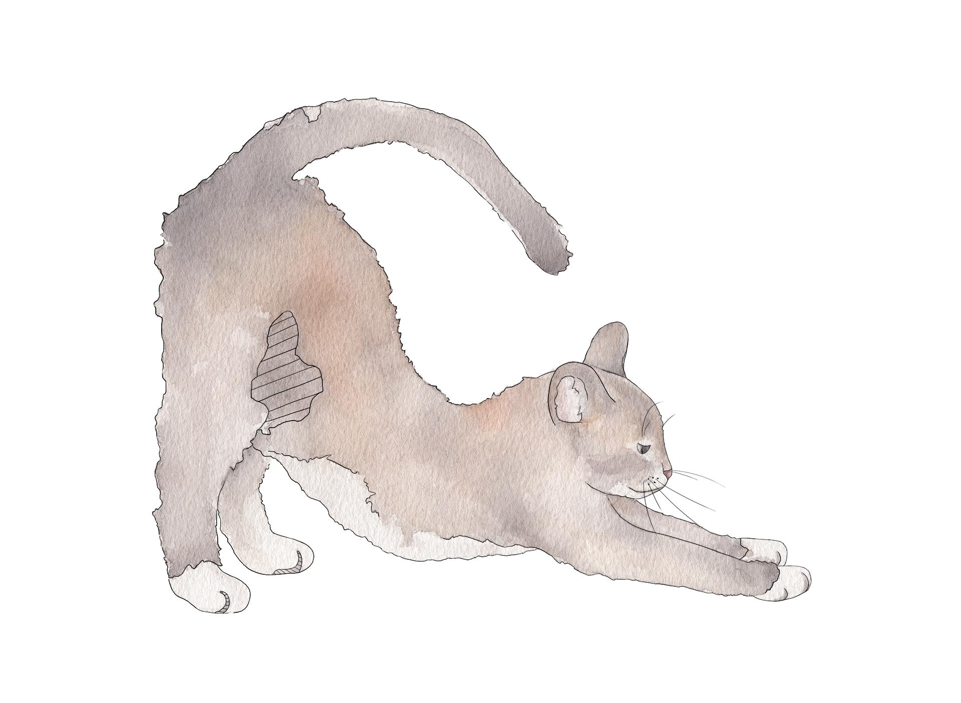 Equili Illustration: Burnout