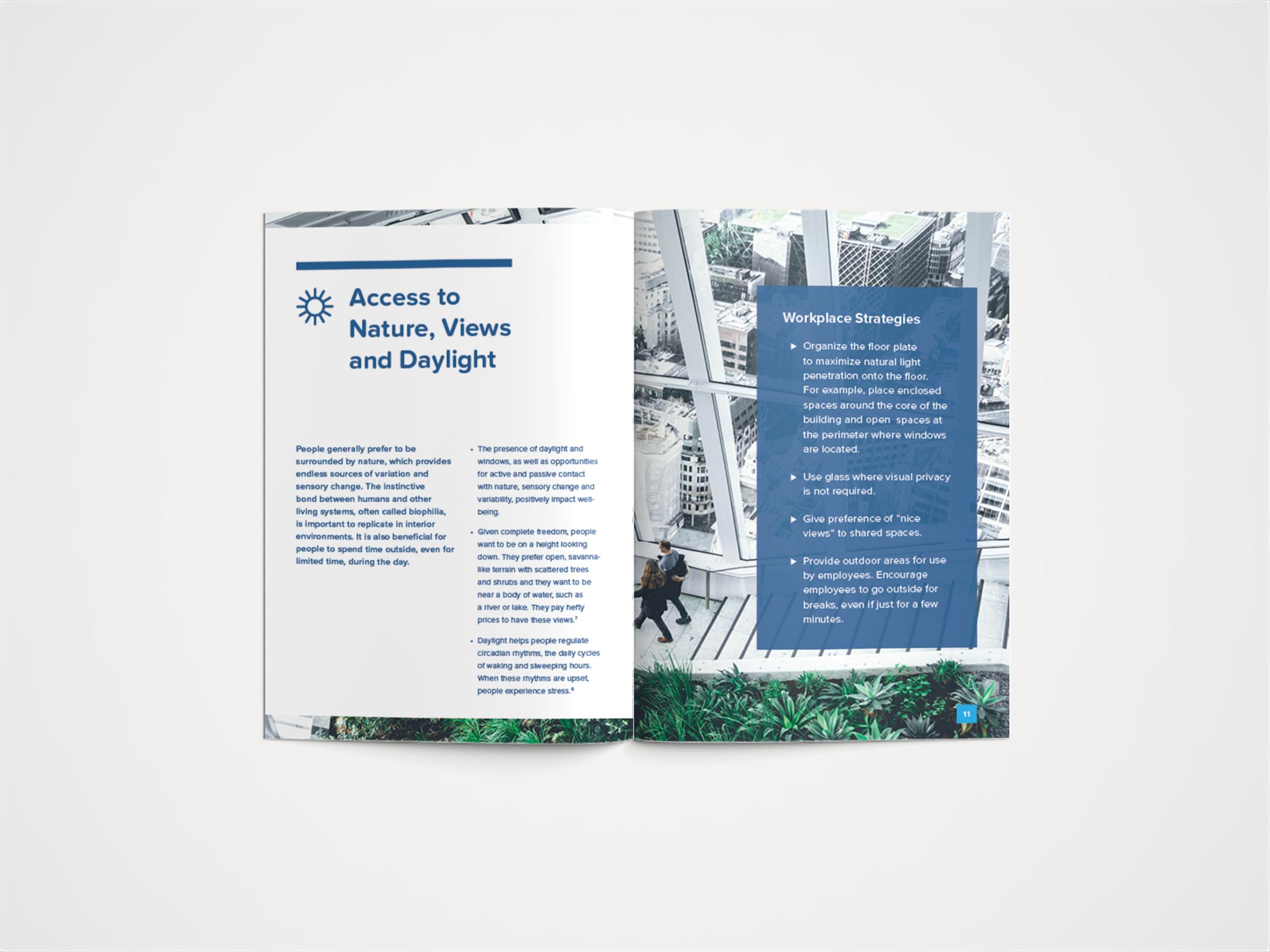 Information Booklet (Spread)